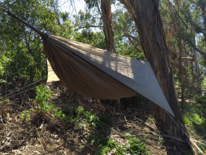 Hennessy Hammock on Hillside